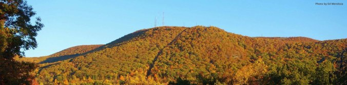 mt-beacon-fall-2015